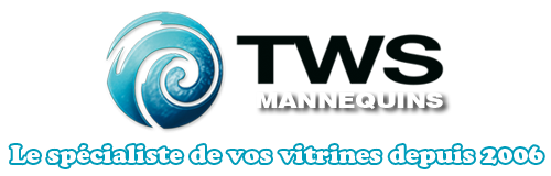 Logo Tradewaves